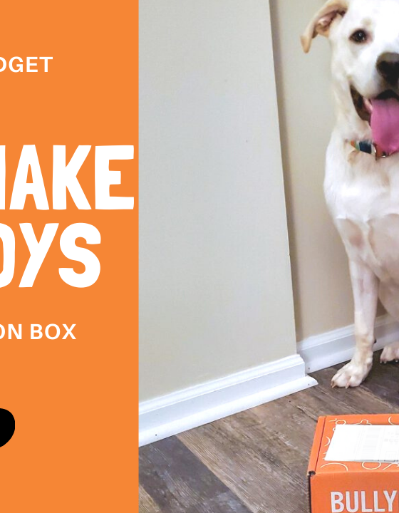 Honeybee Budget Review:  Bullymake Box