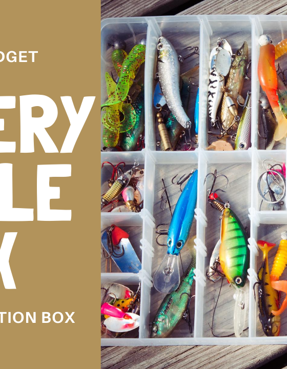 Honeybee Budget Review:  Mystery Tackle Box